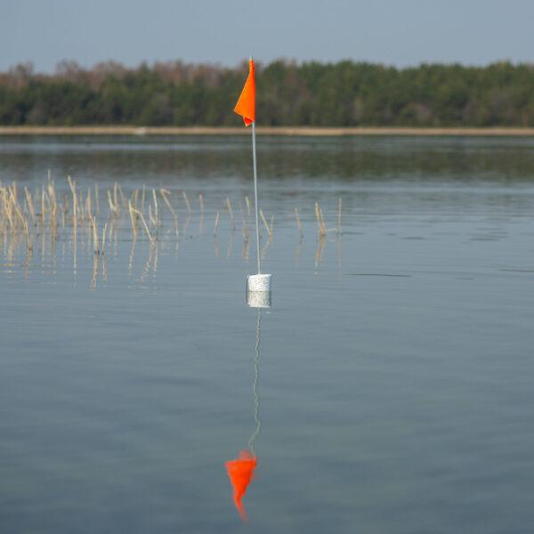 Märklipp väinameri ühe lipuga